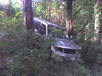 Car_in_woods